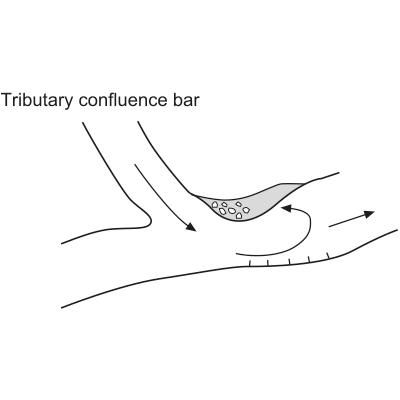 Tributary confluence bar (channel junction bar, eddy bar)