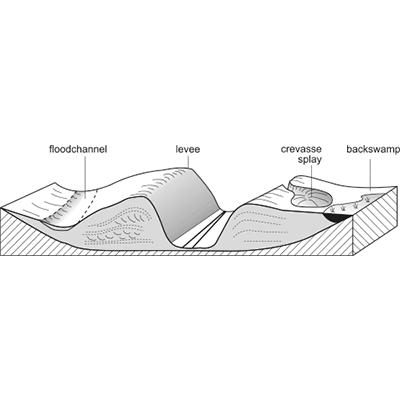 Crevasse splay (crevasse channel fill)