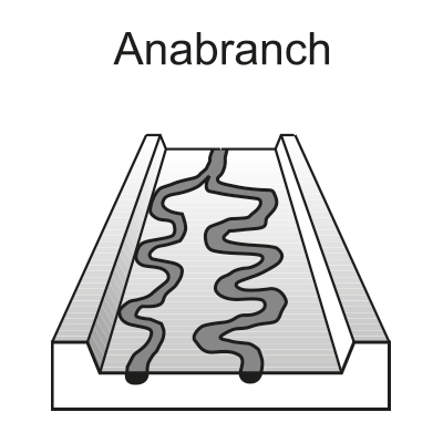Anabranch (secondary or flood channel)